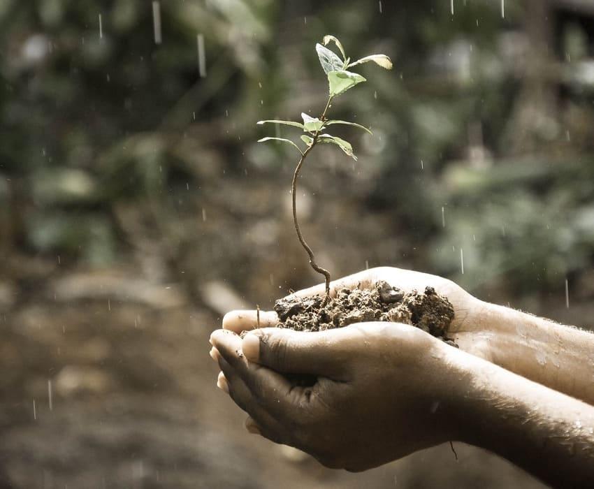 RSE, les entreprises et l'environnement, quel bilan ?