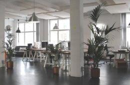 Flex office différentes perspectives
