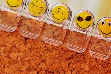 Bonheur au travail : le succès du secteur public belge